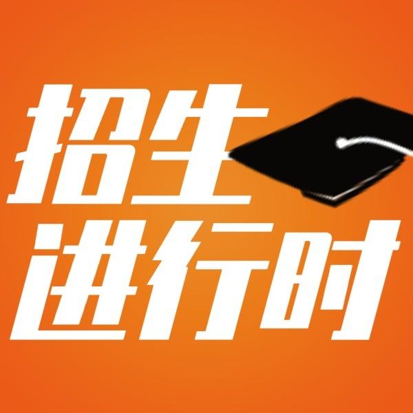 橙色商务培训机构招生