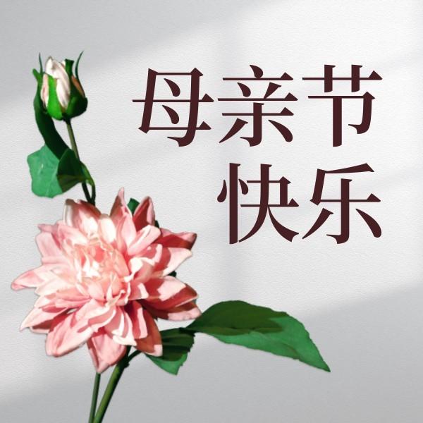 母亲节花卉图文简约风公众号封面小图模板
