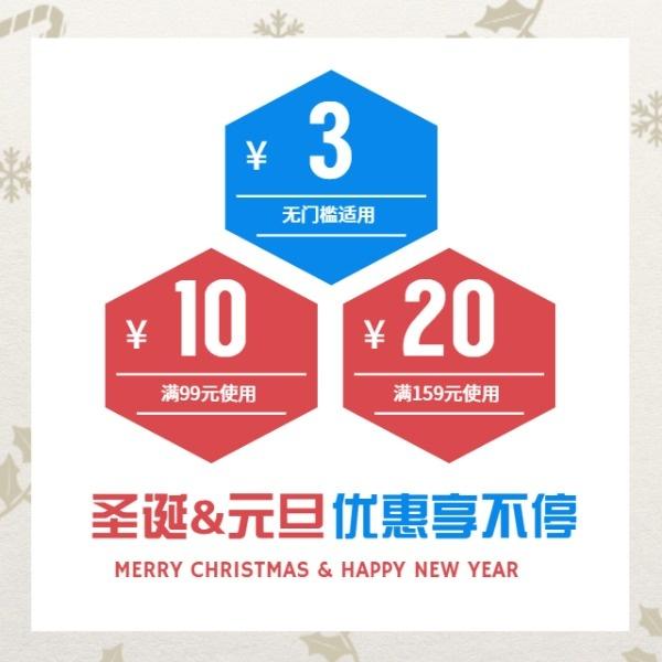 圣诞节元旦节促销优惠券植物简约雪花