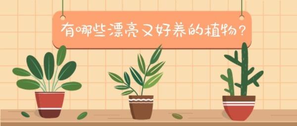 绿色植物养护