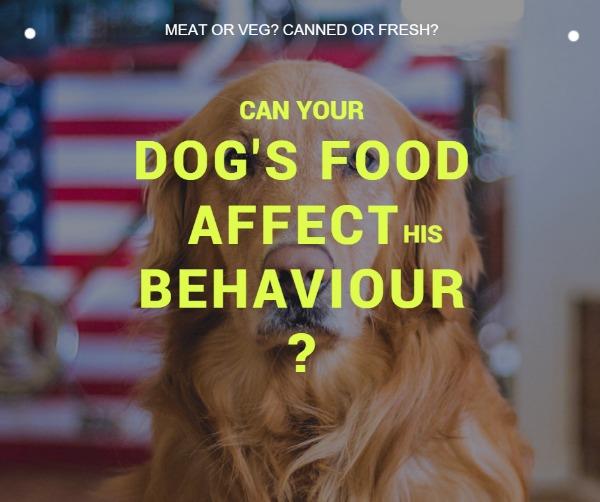 褐色宠物食品主题海报