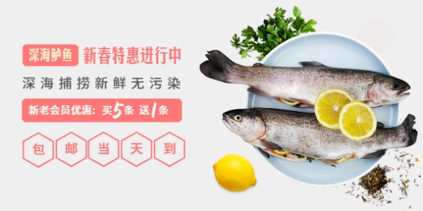 海鲜鱼类新老会员促销