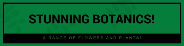 绿色简约植物封面图