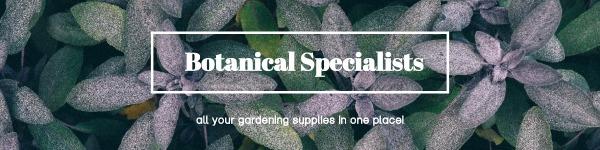 绿色简约植物商店封面