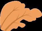 枫树树植物树木自然