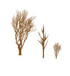 树木树树林装饰元素装饰