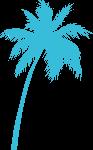 椰子树树树木海滩沙滩