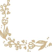 花边花纹花边框装饰