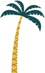 树植物椰树椰子树树木