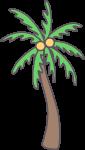 树树木椰树椰子树植物