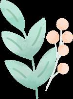 花花朵花卉树叶叶子