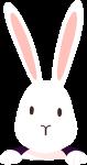 动物兔子生态卡通可爱
