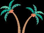 椰子树树树木植物装饰