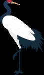 仙鹤crane鸟传统神话