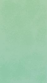 绿色背景绿背景位图照片