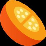 水果南瓜橘色