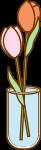 康乃馨花植物花瓶装饰