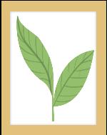 画框挂画叶子装饰装饰元素