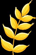 麦穗植物小麦麦子农作物