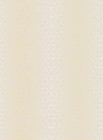 底纹金色背景位图照片