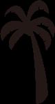 树木树植物椰树椰子树