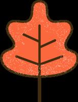 leafautumnleavesfall感恩节