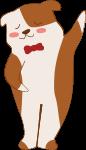 狗动物棕色白色宠物