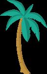 植物树椰子树树木海滩