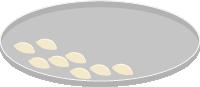 饺子水饺食物面食包饺子