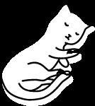 猫猫咪小猫动物喵星人