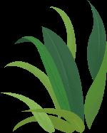麦穗叶子叶子植物装饰装饰元素