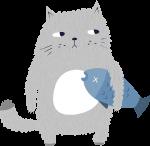 猫小猫鱼小鱼动物
