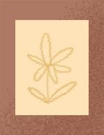 相框画框花装饰装饰元素