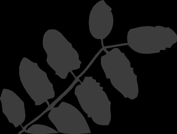 叶子树叶装饰装饰元素手绘
