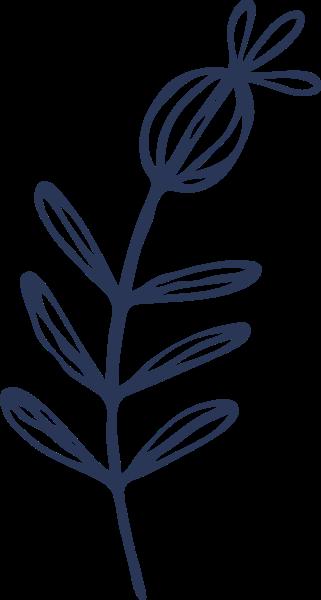 叶子植物树叶枝叶装饰