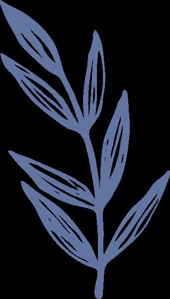 叶子枝叶植物树叶装饰