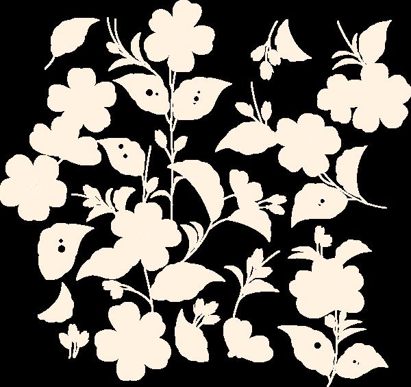 花花朵花卉大花纹花纹