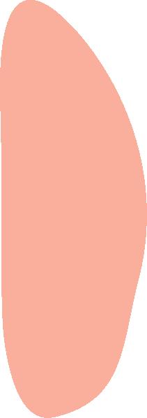 色塊異形手繪裝飾幾何