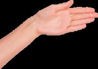 手握手伸手数字手势