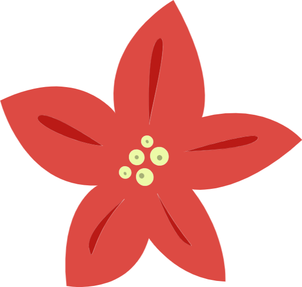 花卉花花朵自然红色