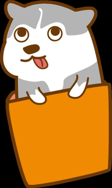 狗小狗动物宠物狗宠物