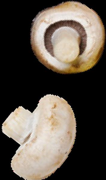 蘑菇香菇蔬菜时蔬抠图