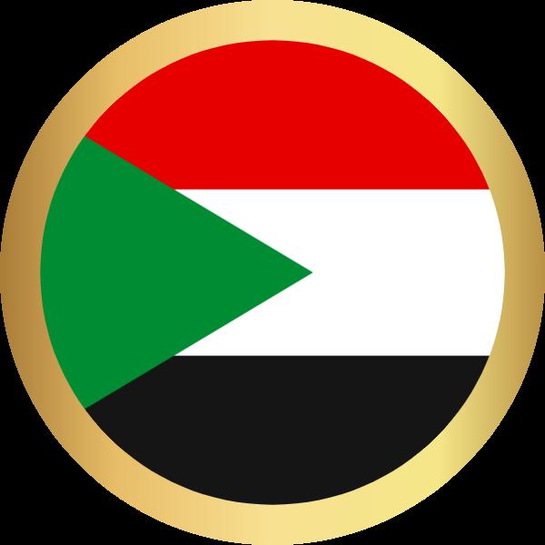 国旗圆埃及国家足球