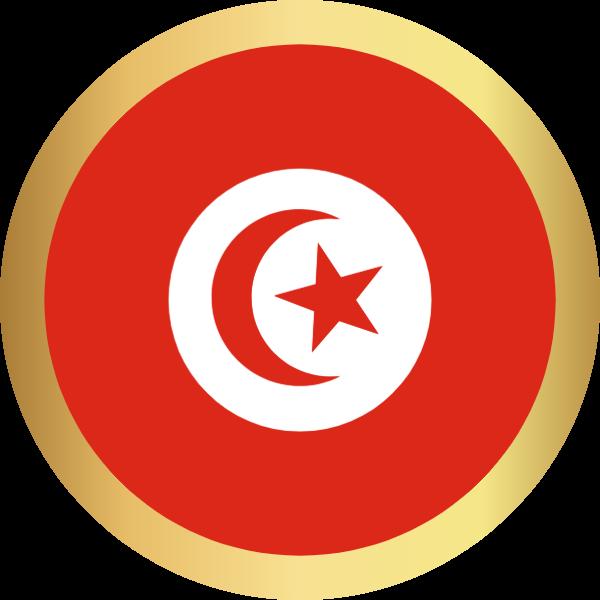 国旗圆突尼斯国家足球