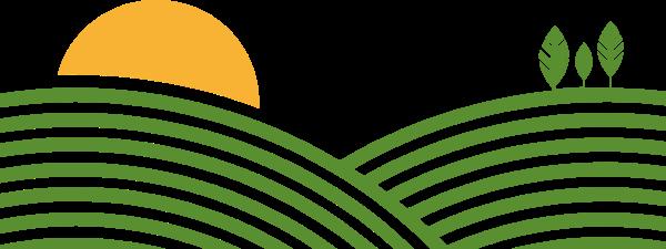 太阳植物田野山坡农田