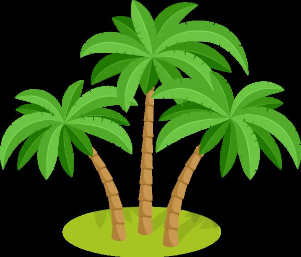 植物绿植树树木椰子树