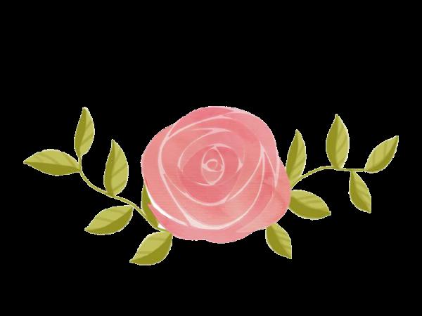 花花朵花卉文艺清新
