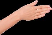 手伸手握手数字手势