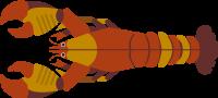 lobsteroceancreaturesea creaturesea animal