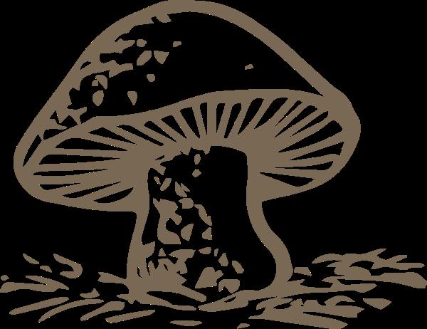 蘑菇菌类食物卡通食品